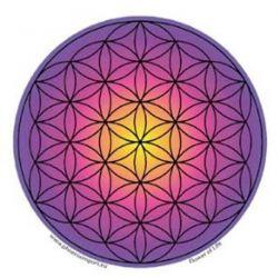 Naklejka na szybę - Fioletowy Kwiat Życia