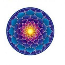 Naklejka na szybę - Kwiat Lotosu Słońce