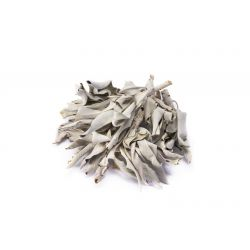 Biała Szałwia liście - 25g