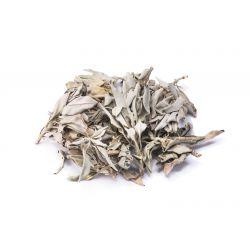 Biała Szałwia liście - 50g