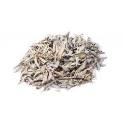 Biała szałwia liście - 100g