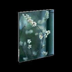 Notatnik - Kwiaty